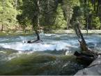 yosemite-merced-river-1