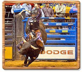 Bull Riding 2009 World Champion - J.W. Harris