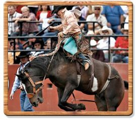 Saddle Bronc Riding 2009 World Champion - Jesse Kruse