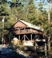 Tuolumne Family Camp