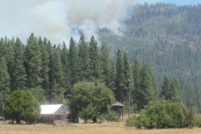 Photo Courtesy of: USFS-Mike McMillan