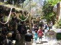 Sonora Spring Festival