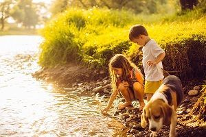 Portrait of a little boy, his sister and their beagle dog standing by the riverbank, playing with water