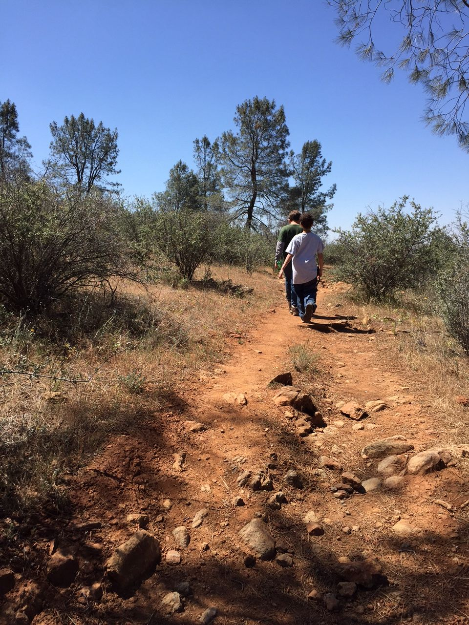 Red Hills Trail
