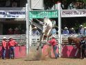 2015 Mother Lode Round-up Rodeo
