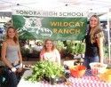 Sonora High School Wildcat Ranch Farmers Market Booth, Aug. 2015