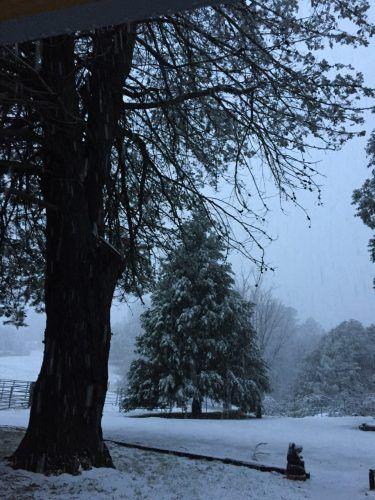 Snow falling in Soulsbyville