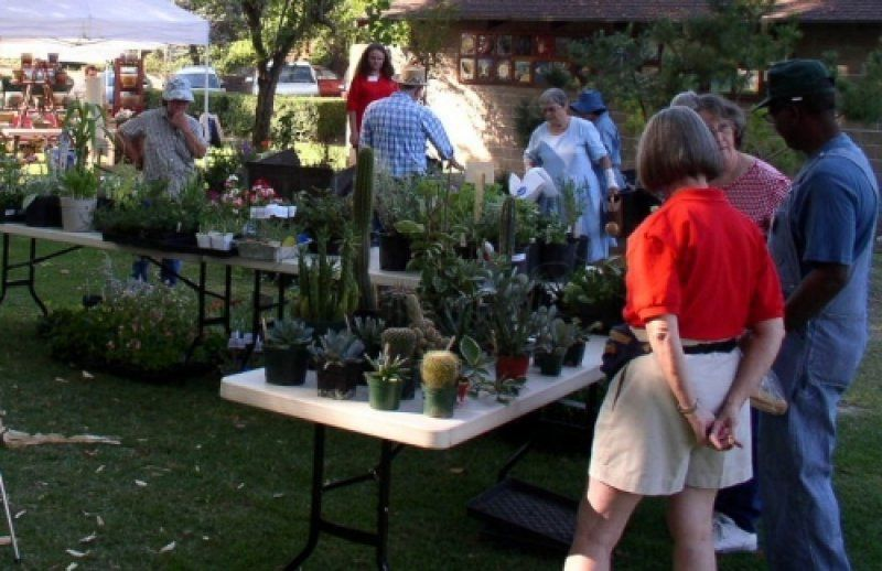 Mother Lode Ca Events Photo Gallery