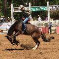 2017 Mother Lode Roundup Rodeo