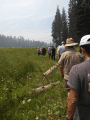 Touring Coyote Meadow