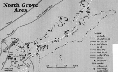 North Grove Big Trees Details