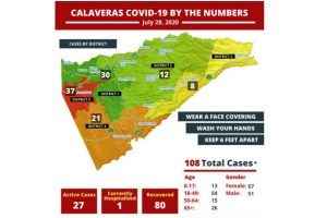 Calaveras County COVID-19 cases by neighborhood