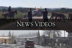 newsvideos