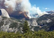 Meadow Fire in Yosemite