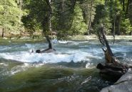 Mercded River in Yosemite, CA