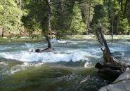 Mercded River in Yosemite, CA